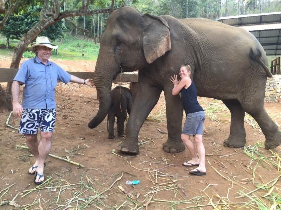 s&t elephant
